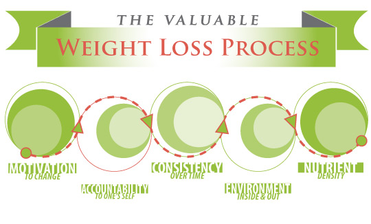 weight loss process - new directions nutrition counseling